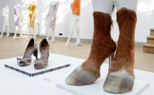 Sapatos feitos com animais mortos.